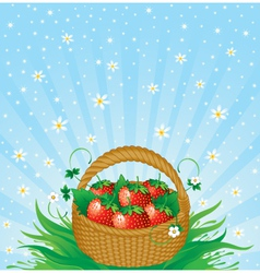 Summer harvest vector
