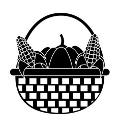 Pumpkins and corns design vector