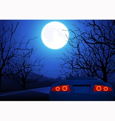 Sport car on night road vector image