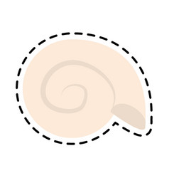 Conch or shell icon image vector