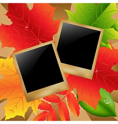 Retro Photo With Leaves vector image