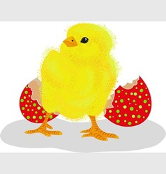Chicken with a red egg shell vector