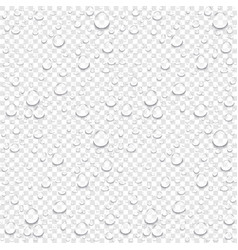 realistic water drops transparent background vector image