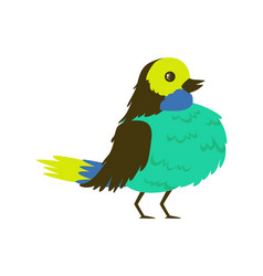 Tropical bird turquoise breasted vector