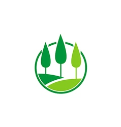 pine tree nature landscape logo vector image