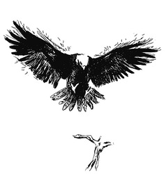 Hand sketch eagle vector image