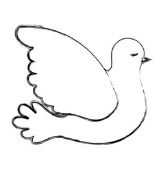 pigeon peace side view on blurred silhouette vector image