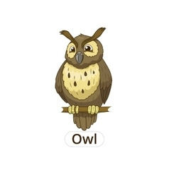 Forest owl bird cartoon vector image