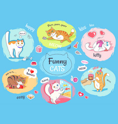 Funny cats poster with images of everyday life vector