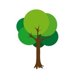 tree green cartoon vector image vector image