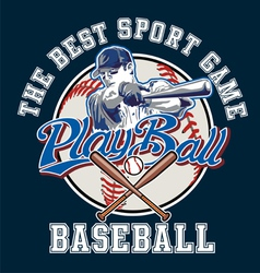 Playball baseball vector