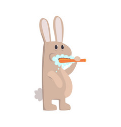 Cute cartoon bunny brushing teeth with tooth brush vector