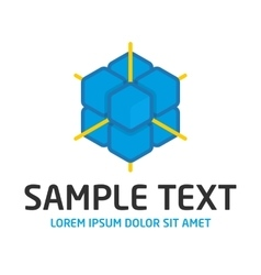 Blue cube logo template vector image