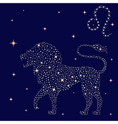 Zodiac sign leo on the starry sky vector