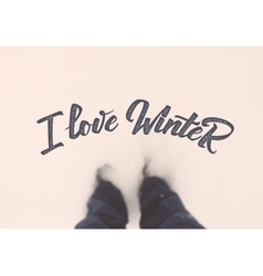 I love winter calligraphic quotation on blurred vector