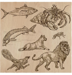 Animals - an hand drawn pack line art vector