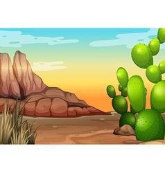 Desert vector