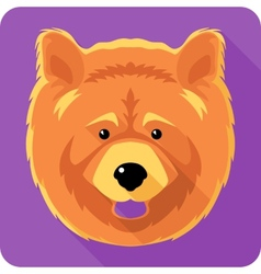 dog chow-chow icon flat design vector image