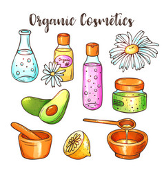 Organic cosmetics beauty set hand vector