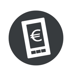 Monochrome round euro screen icon vector