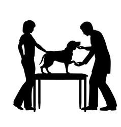 Vet examining dog vector