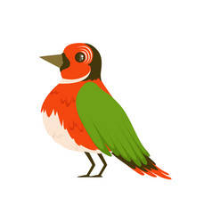 Colorful bird vector