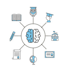 brain student information concept vector image