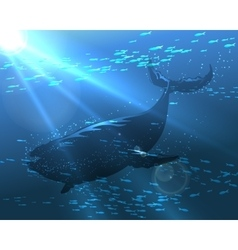 Floating whale vector