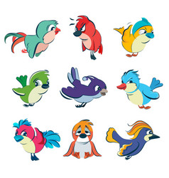 funny different birds set in vector image vector image
