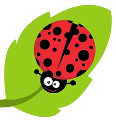 Happy Cartoon Ladybug On A Leaf vector image vector image