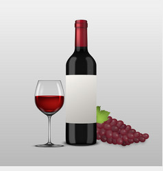 realistic grapes brunch wine glass and vector image
