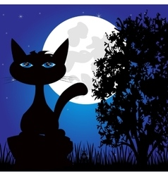 Wild panther on nature in the night vector image vector image