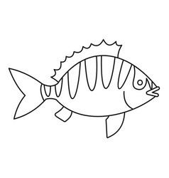 perca fluviatilis icon outline style vector image