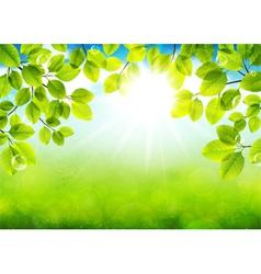 Solar day vector image