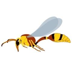 Realistic wasp vector