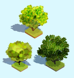 Set of 3d isometric trees with shadow and a vector