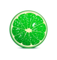 Lime vector