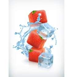 Strawberry ice cubes and a splash of water vector image