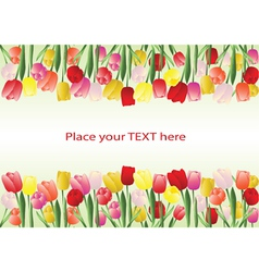 Tulips frame vector