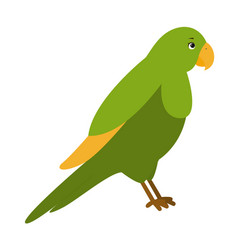 parrot for children vector image vector image