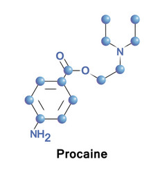procaine is a local anesthetic vector image