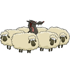 wolf and sheeps vector image vector image