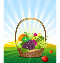 Fruit basket in the meadow vector