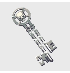 Double silver key with pirate symbols cartoon vector