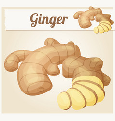 ginger root cartoon icon vector image