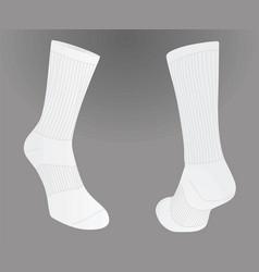 Two white socks vector