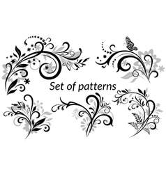 Vintage floral calligraphic patterns vector