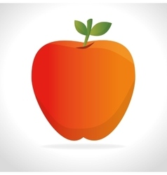 Orange fruit icon graphi vector