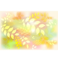 Background from leaves and rowan Autumn leaf fall vector image