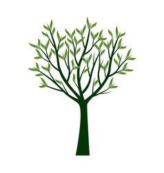 Green trees with leafs vector
